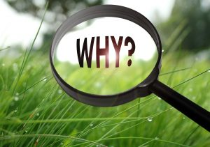 Why? Ask questions